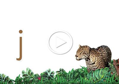 J – Station 3