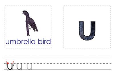 U- Write the Letter