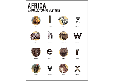Level 3 Africa Overview