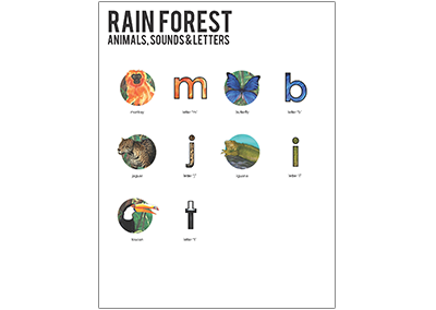 Level 2 Rain Forest Overview